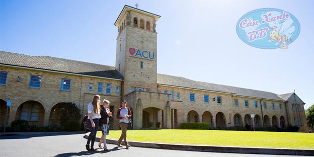 Tại sao Du học Úc nên chọn đại học công giáo Úc – Australian Catholic University (ACU)?