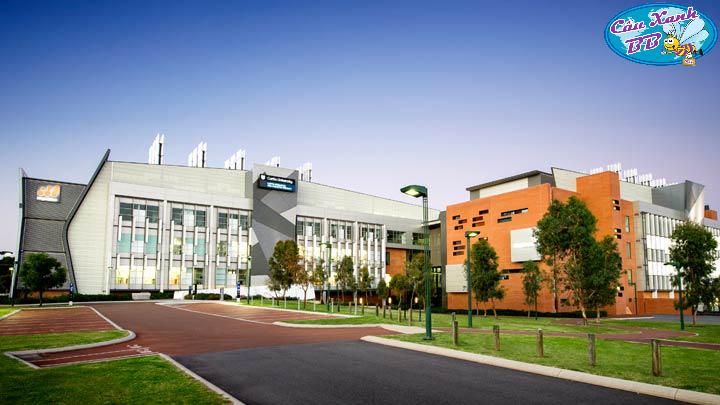 Con đường du học Úc dễ dàng nhất để vào đại học Curtin 2018