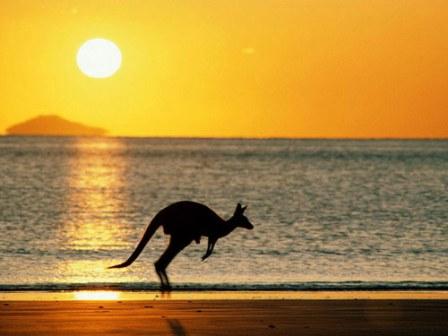 Du học Úc: Đã có danh sách nghề định cư mới!