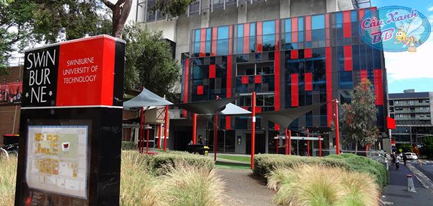 Du học Úc, chọn đại học Swinburn University of Technology, chọn học bổng khủng cho năm 2018