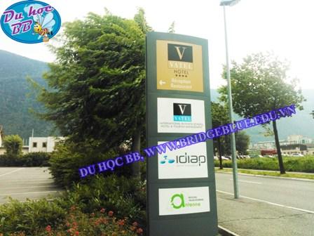 Tin mới từ trường Vatel Thụy Sĩ, tháng 8/2013