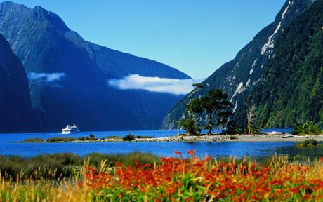 Tìm việc làm tại New Zealand!