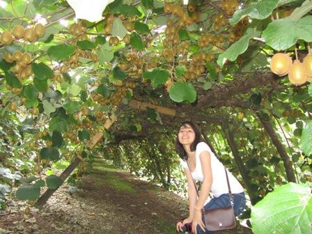 Du học New Zealand: Khoá học hè chuyên sâu