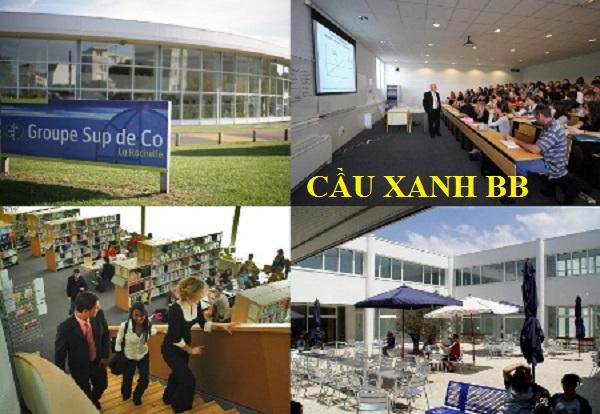 Giao lưu với ESC LA ROCHELLE – Top 5 trường Thương mại thế giới