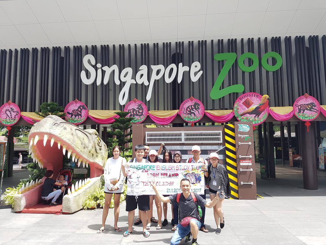 Du học Tết Nguyên đán tại Singapore: Tận hưởng một kì nghỉ Tết khác biệt!