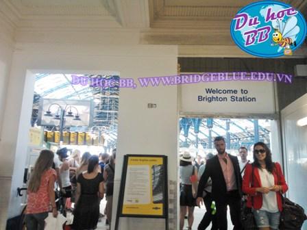 Du học Anh quốc: mời bạn thăm thành phố Brighton và đại học Brighton