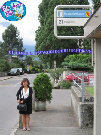 Du học Thụy Sĩ: Mời thăm trường IMI cùng công ty Cầu Xanh: Học bổng và các hỗ trợ vượt trội.