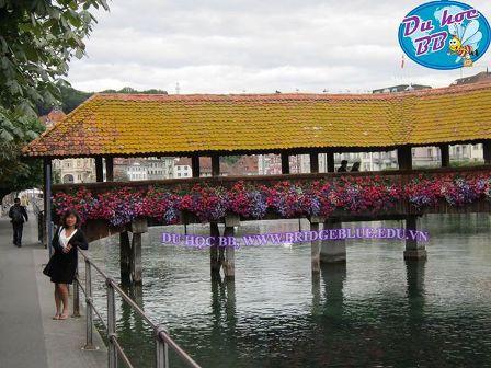 Du học Thụy Sĩ cần biết: Luzern, nơi lí tưởng để du học kinh doanh và quản trị khách sạn!