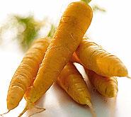 củ cà rốt argovie đặc sản thụy sĩ.jpg